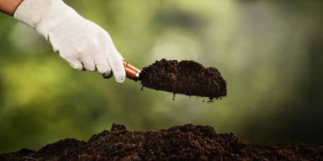 adding new soil to your garden